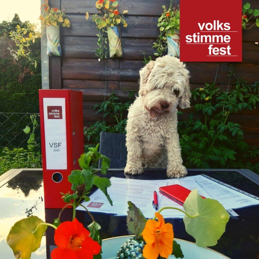 Volkstimmefest 2020 Corona News mit Hund